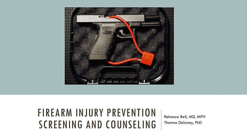 Lethal Means Safety and Suicide Prevention: New Approaches for Firearm Safe Storage Counseling