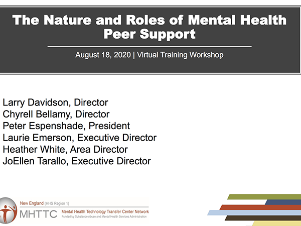 The Nature and Roles of Mental Health Peer Support